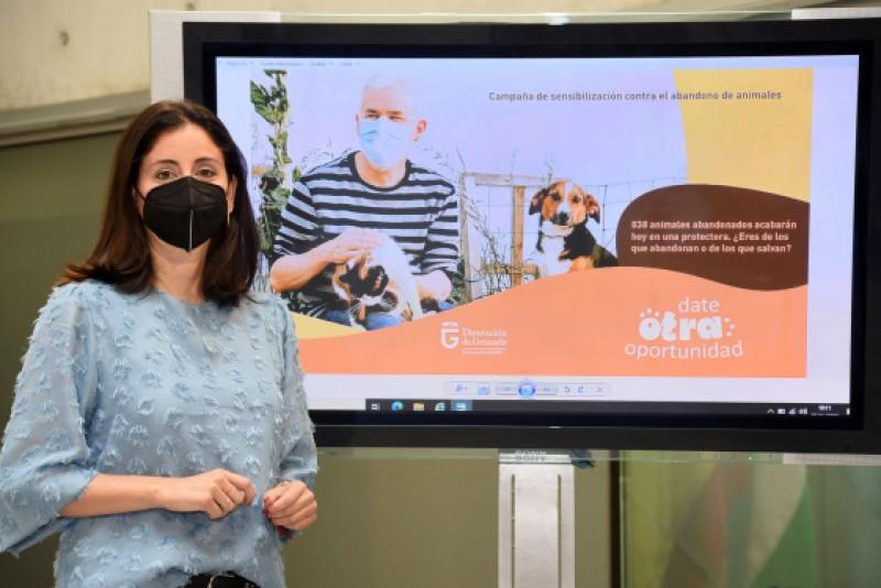 Granada provincial authorities present new animal adoption campaign