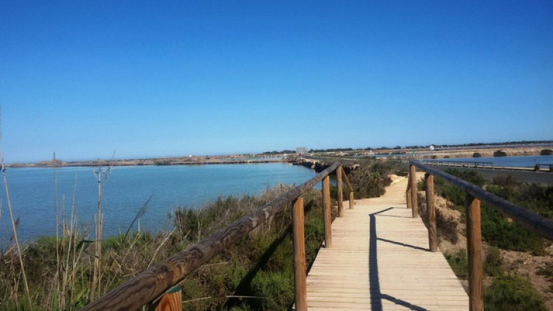 New life for Cadiz salt marshes thanks to EU-funded project