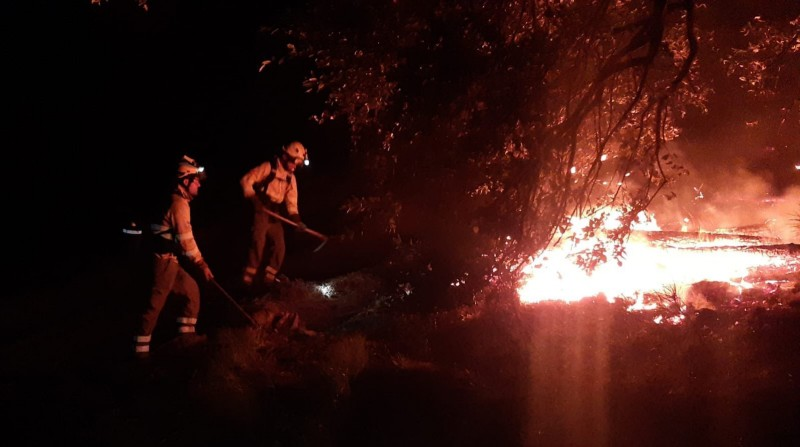 Malaga fire could have been started intentionally