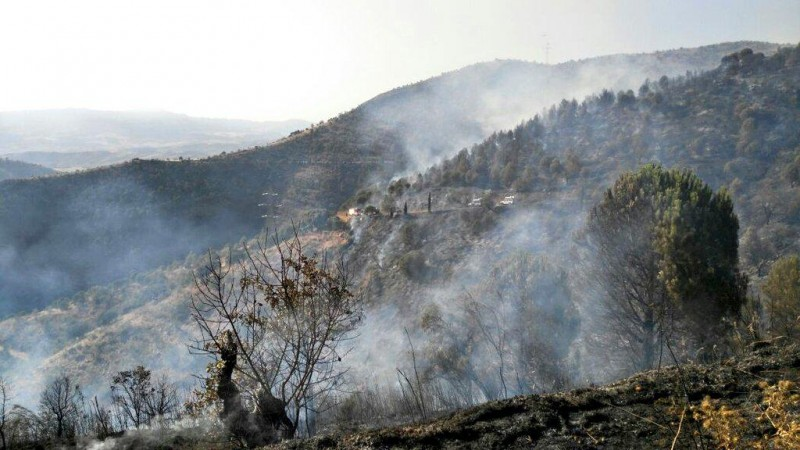 <span style='color:#780948'>ARCHIVED</span> - Sierra Bermeja fire still raging underground one month on