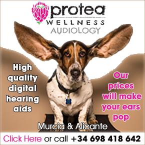 Protea Wellness Aiudiology banner